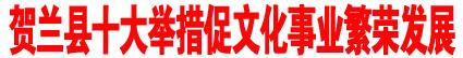 贺兰县十大举措促文化事业繁荣发展.jpg